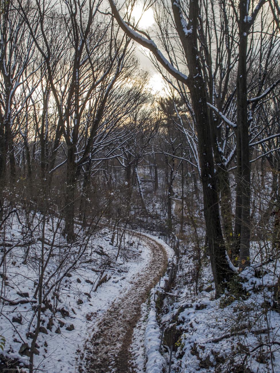 12-10-17: Winding Path