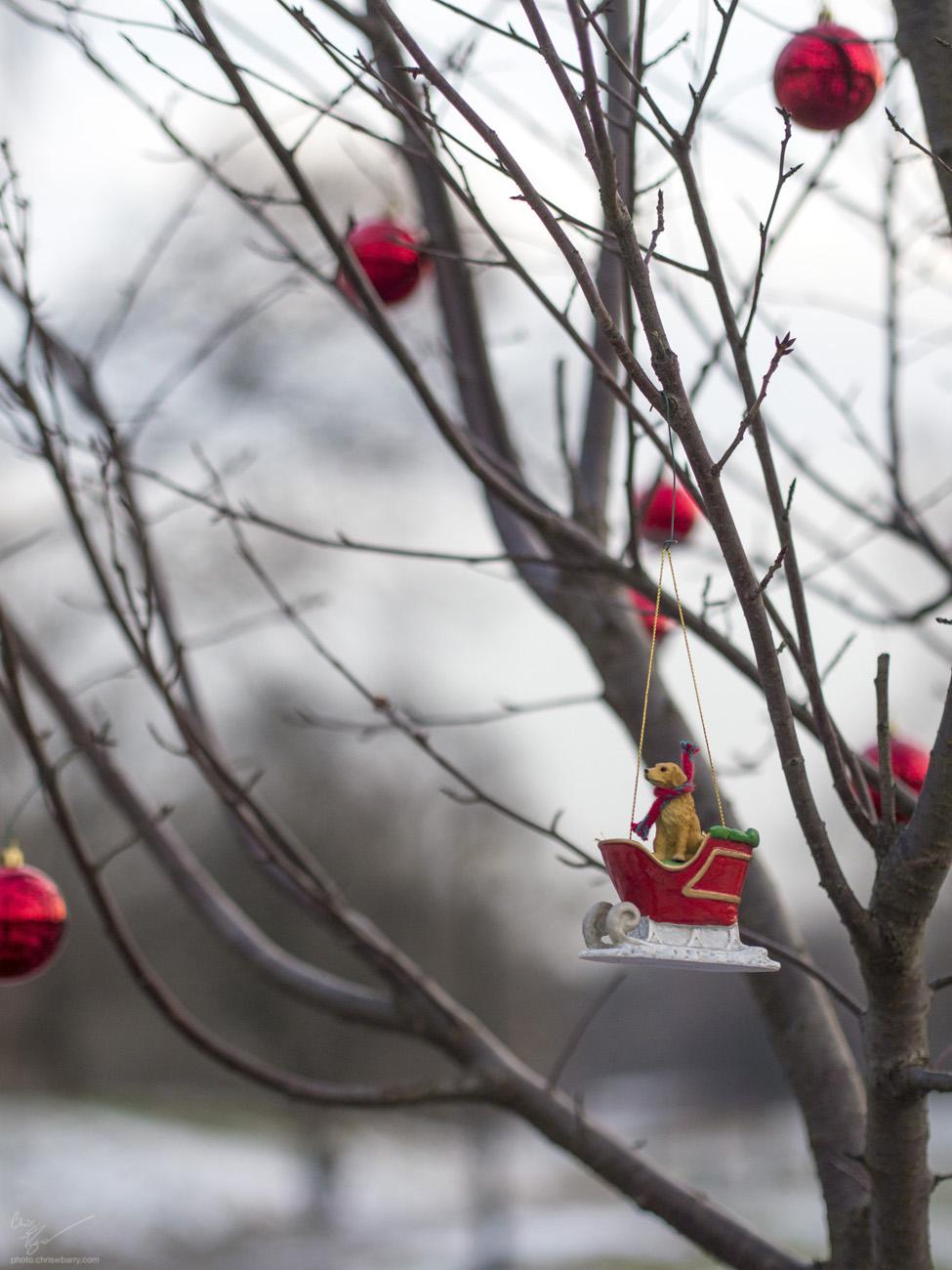 12-17-17: Ornaments
