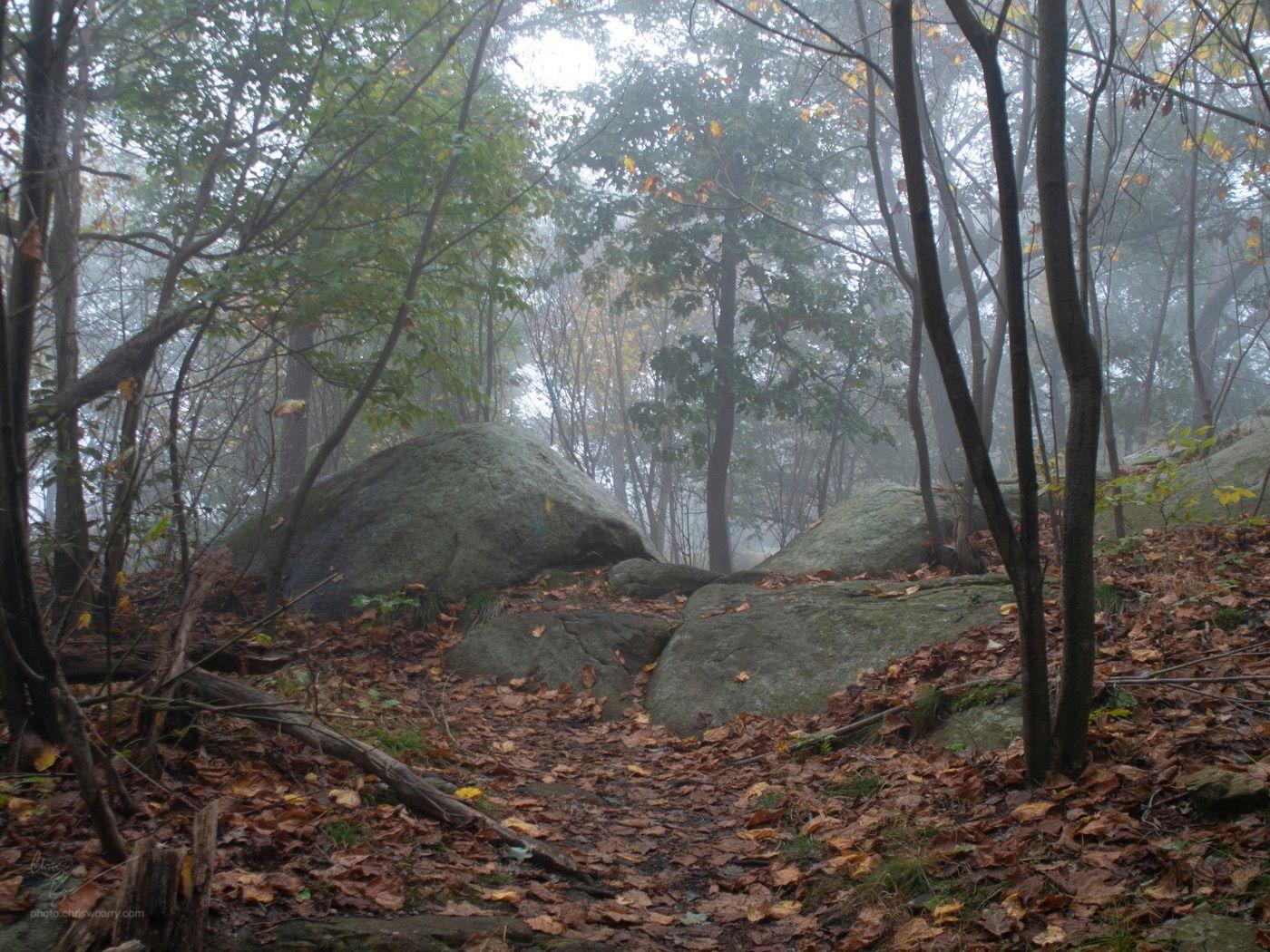 10-06-18: Storm King Fog